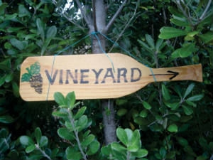 St. Martin's Vineyard
